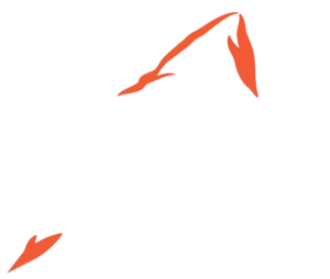 The Teton Climbers' Coalition